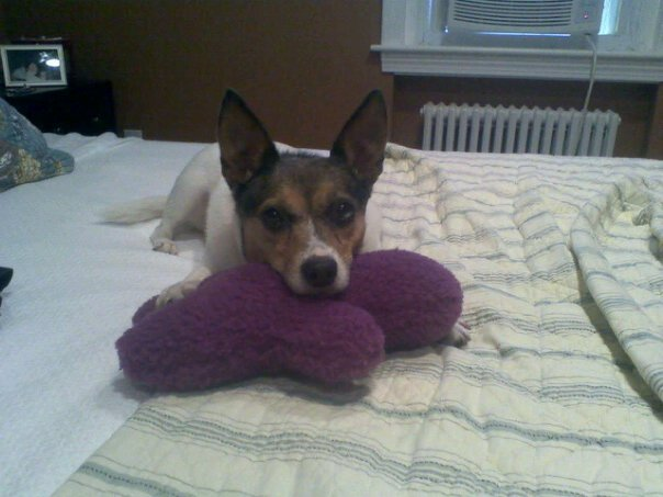 Bella with Her Purple Doll